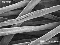 織物の分析「天然繊維か?化学繊維か?」